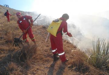 Incendio forestal desnudó carencias en bomberos