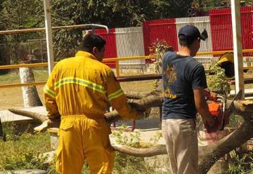 Se extinguen voluntarios en Bomberos