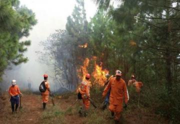 Luego de 4 días, lograron controlar incendio