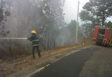 Mueren 2 bomberos y un empleado por gases tóxicos