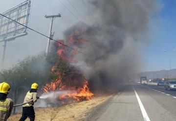 Brigadistas argentinos se suman a labores de combate de incendios forestales