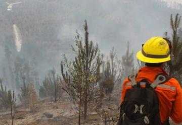 12 focos de incendio afectan al Bío Bío en Chile