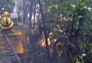 Los incendios forestales en Chubut ya arrasaron mas de 4.000 hectáreas de bosques y vegetacion