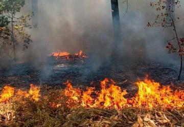 Bomberos combate incendio en Cerro del Toro