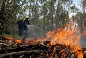 Muere bombero cuando atendía incendio forestal
