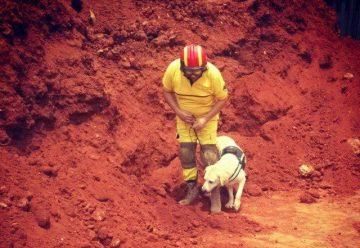 Bomberos voluntarios, sin Unidad Canina