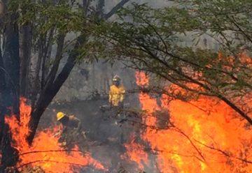 Dos bomberos heridos en un incendio en Quito