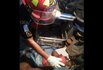 Bomberos de Guatemala auxilian a un perro baleado
