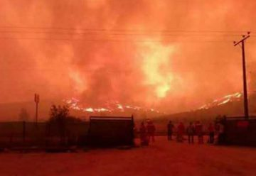 Panamá envía 20 bomberos a Chile para apoyar extinción de incendios