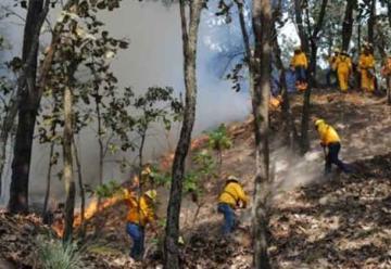 Fallece brigadista que combatió incendió en Mascota