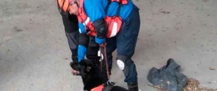 Bomberos de Chajarí se capacitaron en entrenamiento canino