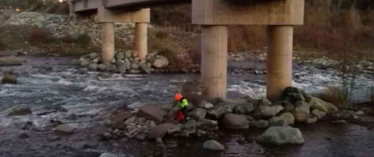 Perrito que habría sido lanzado de un puente es rescatado por bomberos