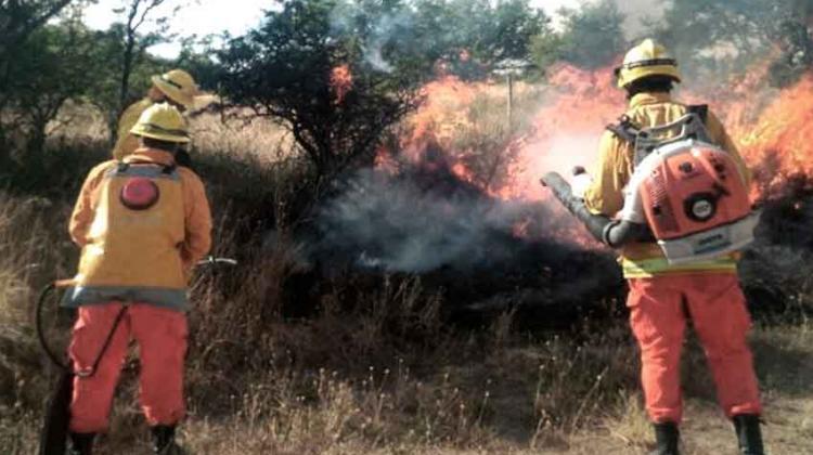 Los operativos contra incendios pasan a la rbita del for Noticias del ministerio de seguridad