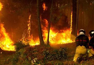 Ola de incendios provocados en distintos puntos de Galicia
