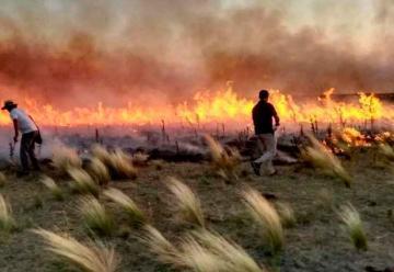 Los incendios en La Pampa destruyeron 700 mil hectáreas