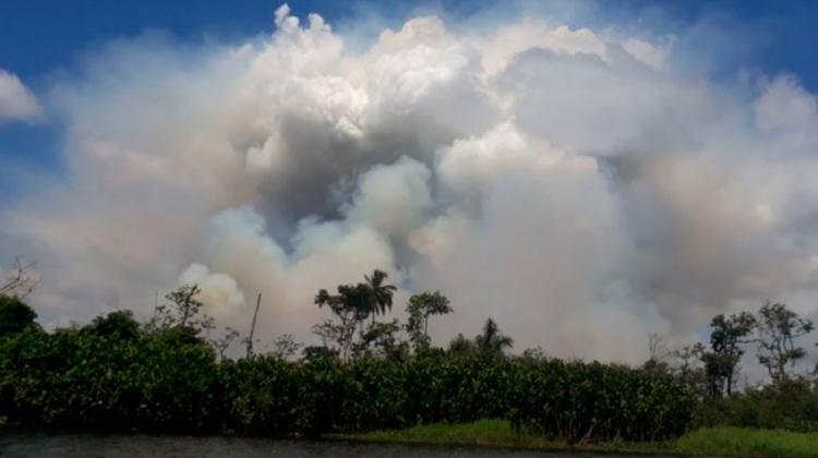 Incendio destruye más de 2.000 hectáreas de reserva