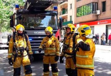 Bomberos rescatan a un gato de un incendio