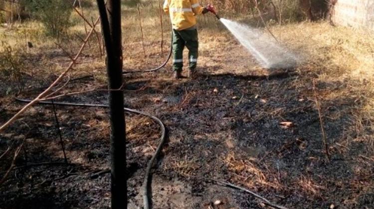 Brigadistas controlaron nuevo incendio en Tinogasta