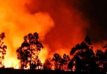 Falleció un voluntario en incendio en Caricuao