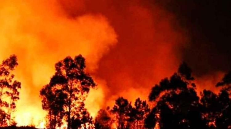 Falleció un voluntario en incendio en Caricuao