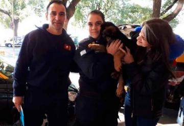Bomberos de Monte Grande adoptó un cachorro rescatista
