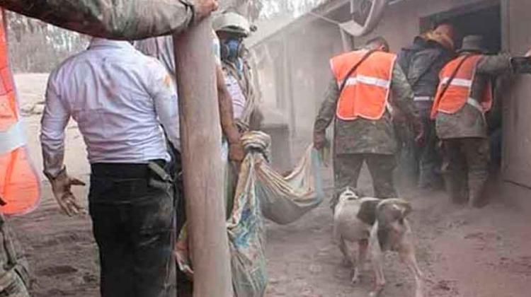 Bomberos mexicanos viajan a Guatemala