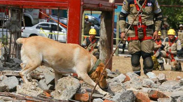 Bomberos ya cuentan con unidad canina de búsqueda