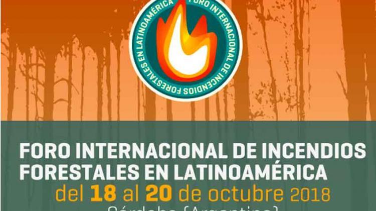1° Foro Internacional de Incendios Forestales en Latinoamérica