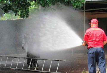Abejas atacan a tres bomberos durante el exterminio