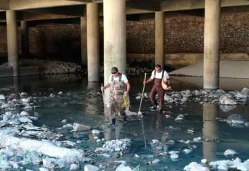 Bomberos rescatan perrita de canal de aguas residuales