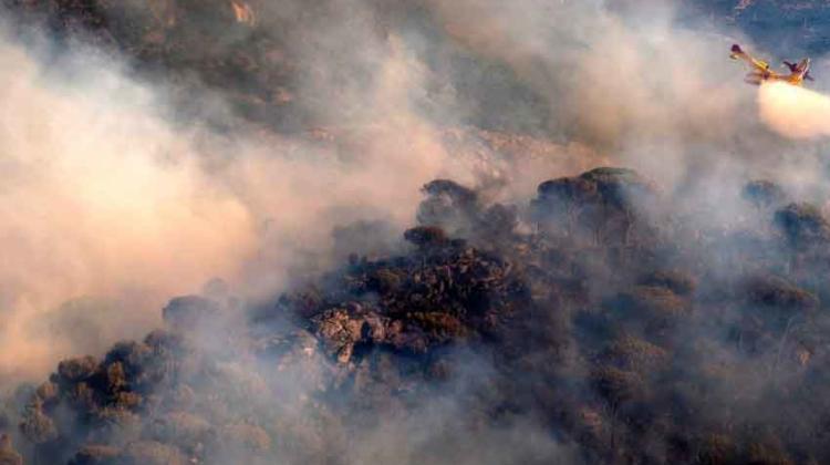 Investigan a un bombero como responsable de incendio forestal