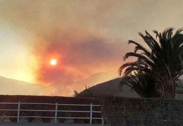 Cinco bomberos lesionados en incendio forestal cerca de Vicuña