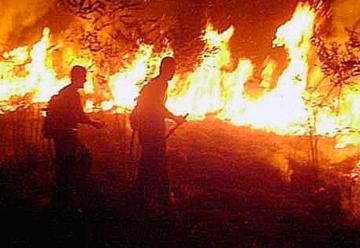 Se hacen pasar por bomberos que van al Amazonas y piden dinero