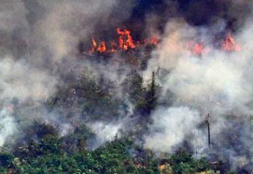 Murió un bombero que combatía el fuego en la Chiquitania boliviana