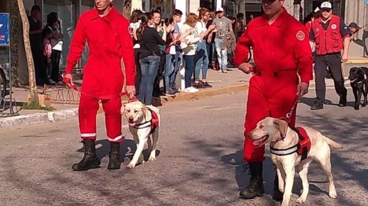Perras rescatistas del cuartel de bomberos de Cañuelas