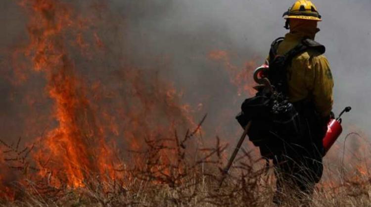Falleció bombero forestal que sofocaba llamas en Henri Pittier