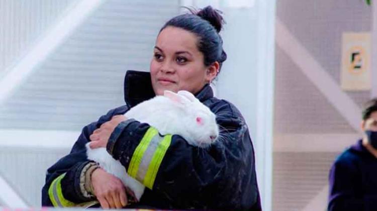 Una bombero rescató a la mascota de una mujer en pleno incendio