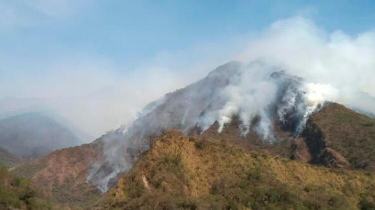 Incendios Forestales de Alta Montaña en Salta y Tucumán