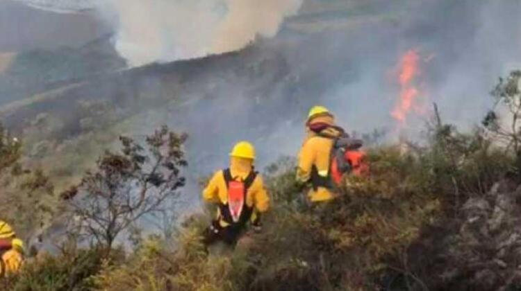 Bomberos de Quito controlaron el incendio forestal en el cerro Atacazo
