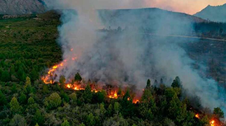El Bolsón: Feroz incendio en la zona de Cuesta del Ternero