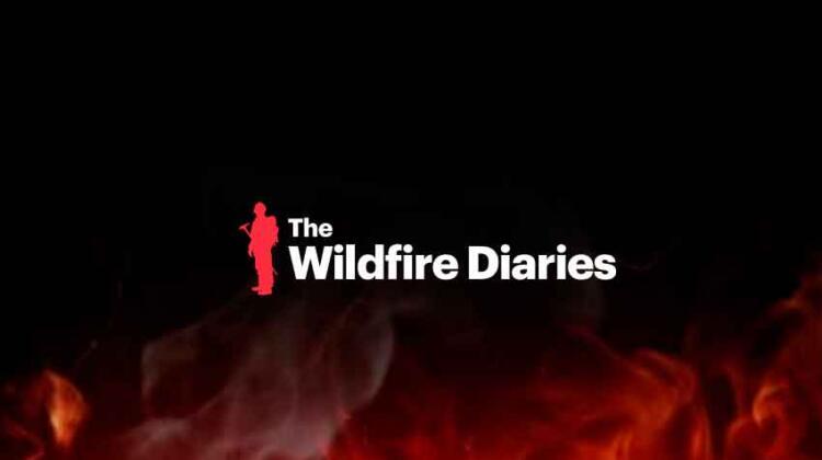 The Wildfire Diaries: documental sobre la gestión forestal