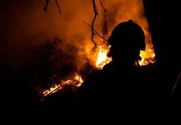 Nace TEP, el primer programa global de formación en incendios forestales