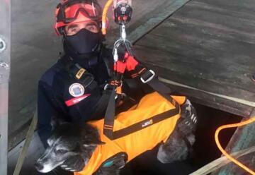 Los Bomberos mejoran sus equipos para rescatar mascotas