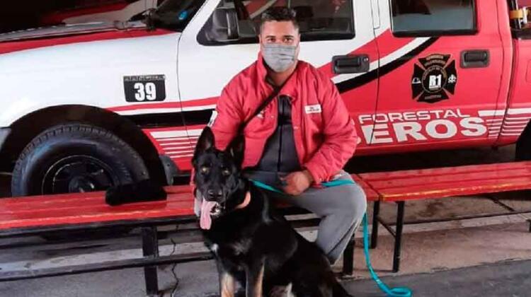 Bomberos voluntarios sumó un nuevo can al grupo K-9