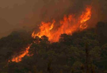 Muere un bombero en incendio forestal en Sierra Bermeja